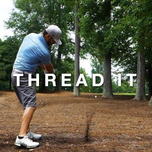 A STINGER THRU THE TREES!/CAPITAL CITY CRABAPPLE COURSE