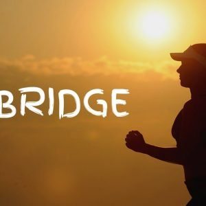 Cardio Exercise 14: Bridge