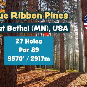 Blue Ribbon Pines, East Bethel (MN), USA - Disc Golf Course Preview