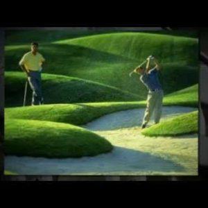 Daily Golf Deals Virginia Beach Virginia