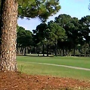Golf Course in Savannah Georgia USA