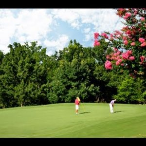 Highland Walk Golf Course at Victoria S. Bryant State Park